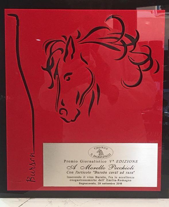 """Abbiamo realizzato per la V edizione del """"Premio giornalistico"""" il Cavallo scapi…"""